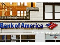 自己資本比率でネット銀行の安全性を比較する