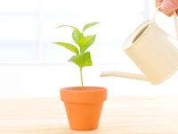 投資信託とETFの最大の違いは自動積立できるかどうかにあり